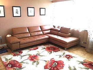 2 секционный диван.